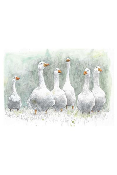 Picture of Hannah Longmuir Print - Looking For Trouble Geese