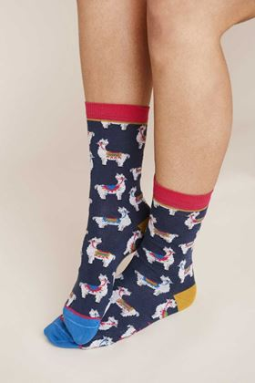 Picture of Mistral Llama Sock