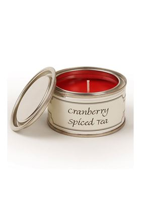 Picture of Pintail Cranberry Spiced Tea Paint Pot Candle