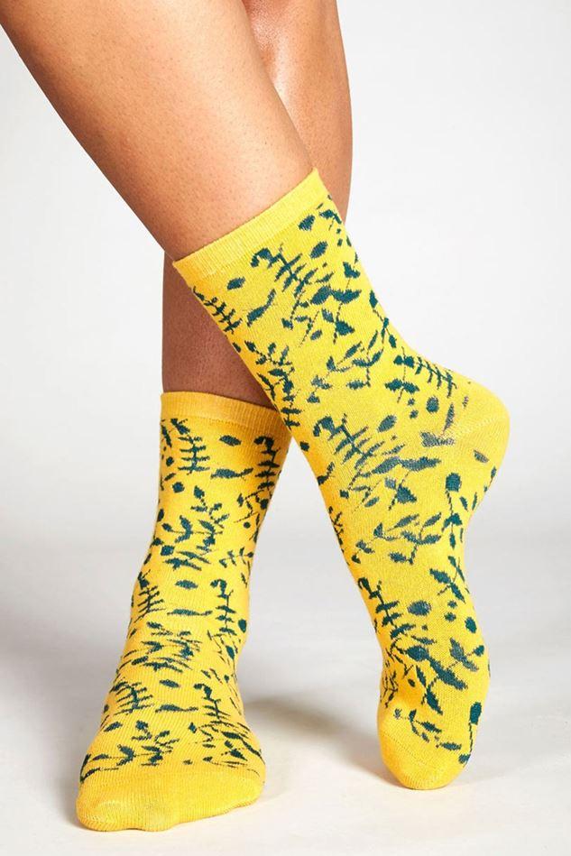 Picture of Nomads Organic Cotton Tresco Socks