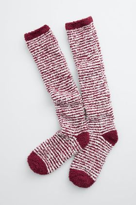 Picture of Seasalt  Women's Fluffies Socks Long