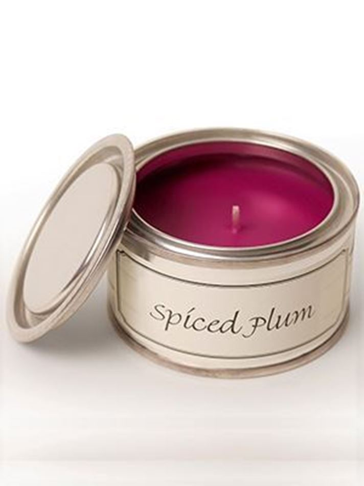 Picture of Pintail Spiced Plum Paint Pot Candle