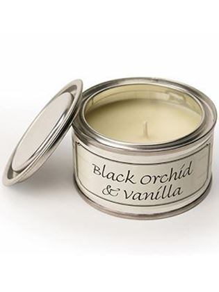 Picture of Pintail Black Orchid & Vanilla Paint Pot Candle
